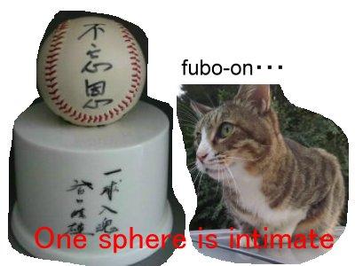 皆川睦雄の画像 p1_35