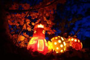 「紅葉の雑木林にかぼちゃランタンで小人の村づくり25th」の画像