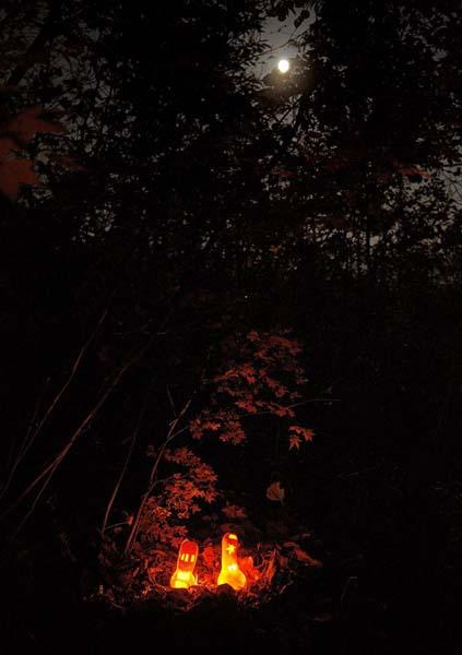 かぼちゃランタンで小人の村づくりのお知らせ:画像