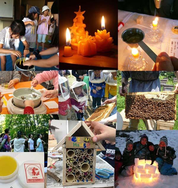 ハチ蜜の森体験教室 今年も賜ります!:画像