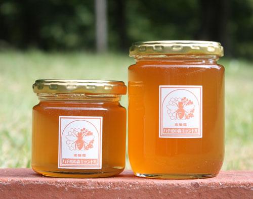 「ハチ蜜の森のハチ蜜 工房で販売!」の画像