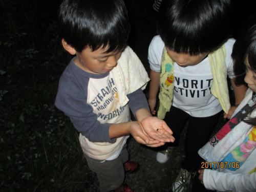 夜の集い 足湯とホタル観賞