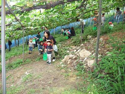 2歳児ももくみさんと3歳児たんぽぽくみさんの親子バス遠足。