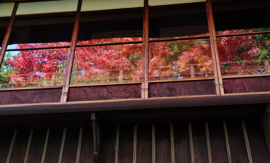 清遠閣、明治のガラス窓ごしの紅葉
