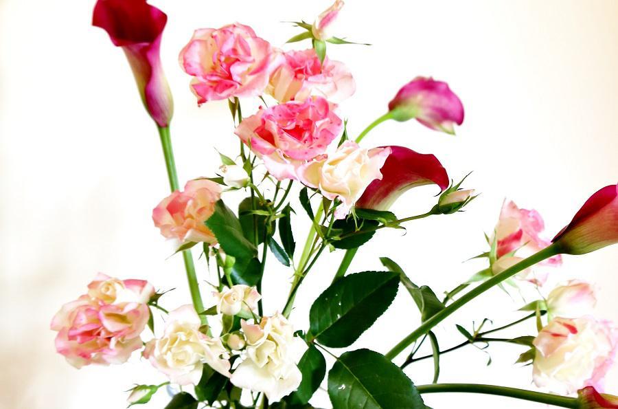 【イベントのお知らせ】 秘密の花園 ~魅惑の香るバラ展~