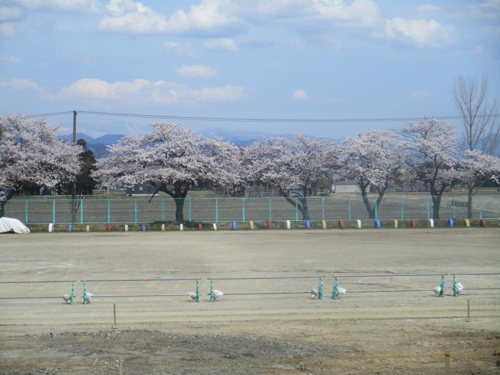 春の景色をおすそわけ…。