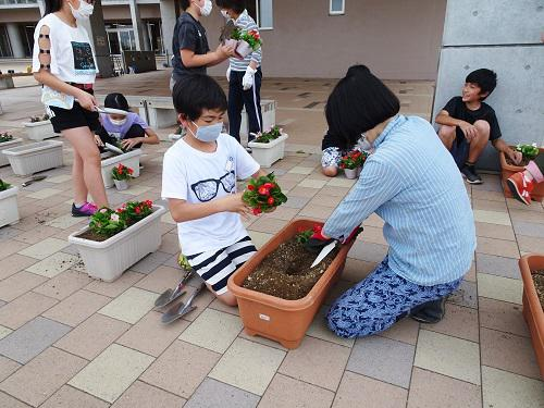 人権の花を植えました