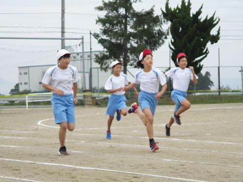 第一小学校陸上記録会2 短距離走