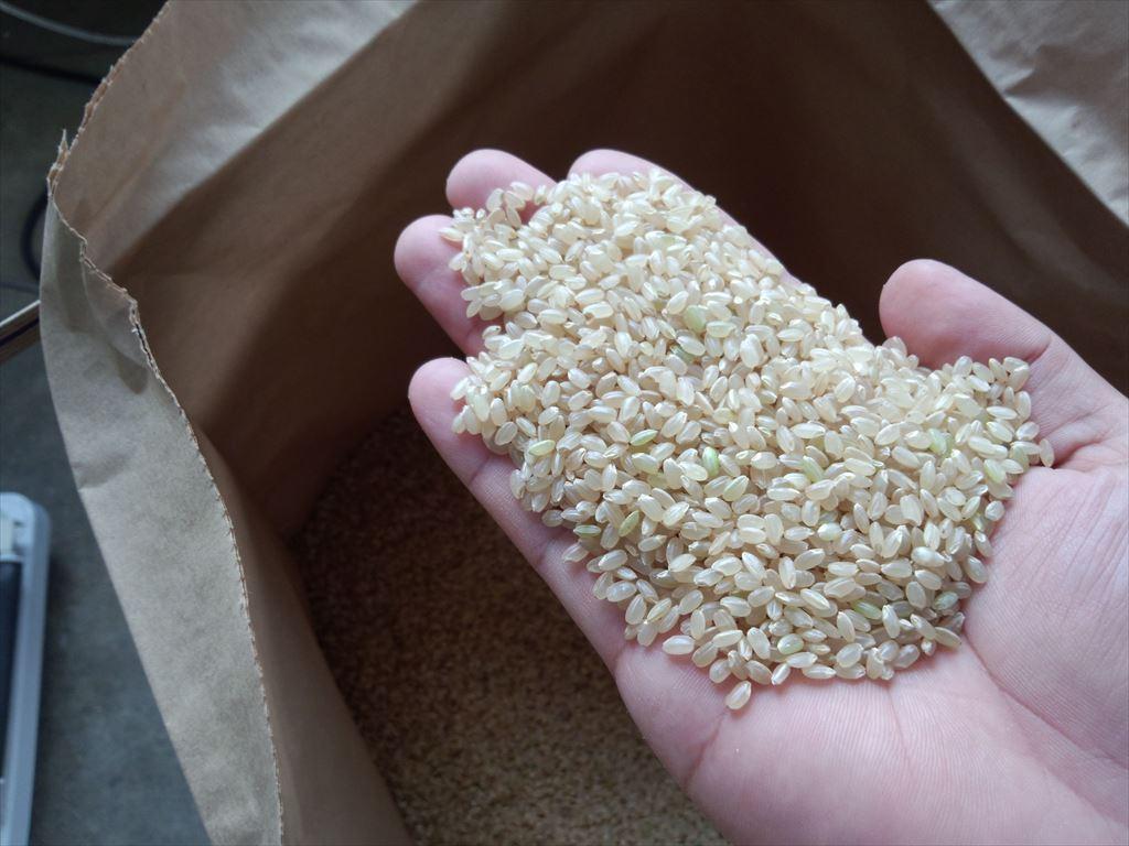 お米の乾燥ともみすり:画像