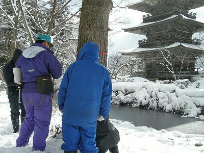 八幡山を守る会(樹幹注入)