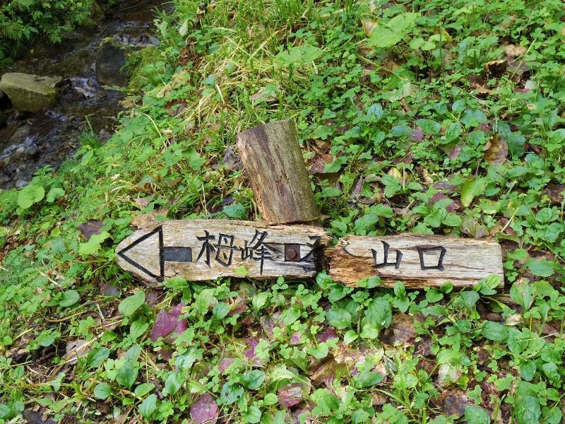 栂峰(つがみね)登山道調査!!~家から出たら帰るまでが登山だ編~