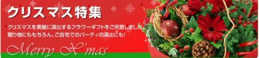 2014/12/14 14:57/フラワーギフトで素敵なクリスマスを!