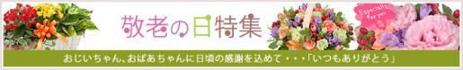 2015/09/10 18:44/9月21日 敬老の日は花ピューピットの贈り物を(^O^)/
