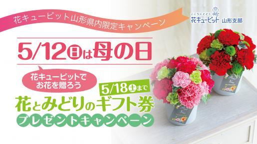 2019/04/24 15:51/母の日キャンペーン開催中です! (^o^)/