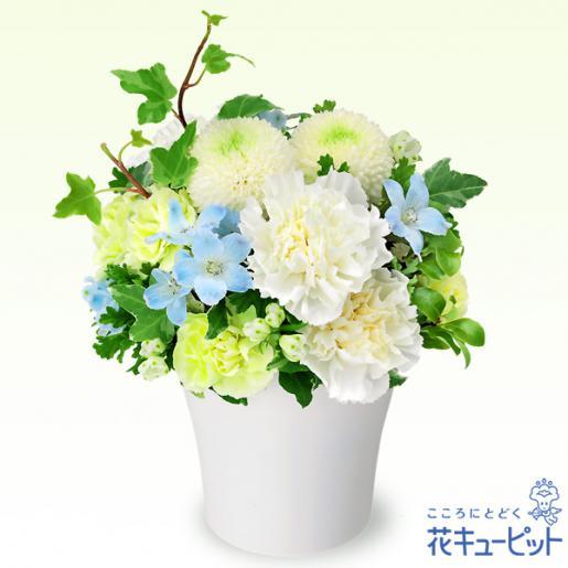 2019/07/06 12:08/お盆の花贈りは 花キューピットのお店におまかせください
