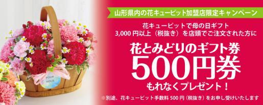 2020/04/01 08:30/母の日キャンペーン開催中です!