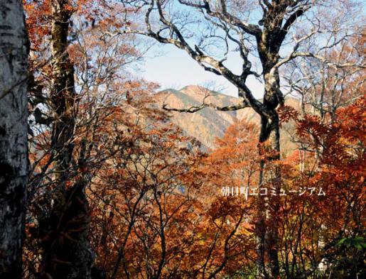 2011/04/23 09:17/【朝日町から見える大朝日岳VP33】29.鳥原山と小朝日岳の中間点