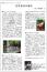 「【ノート】空気神社の誕生」画像