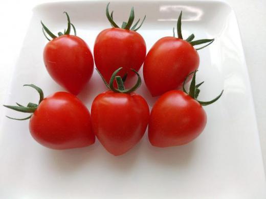 《バラ庭》ガーデンNOW〜・・トマトの初収穫!/
