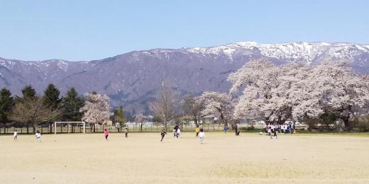 4/12#220 桜咲くグラウンドに全員集合。/
