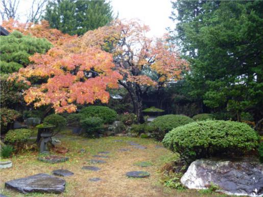 2011/11/28 11:05/晩秋の丸大扇屋