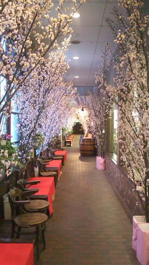 「スモークハウスファイン近くは桜満開」の画像