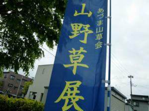 「あづま山草会【第53回春の山野草展】」の画像