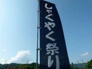 「文化ネコ的花回廊その2【南陽市しゃくやく祭り(諏訪神社)】」の画像