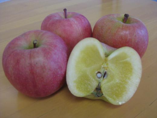 パイナップルりんご!?〜高徳りんご〜/