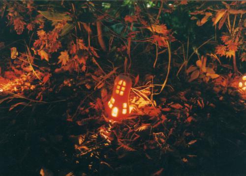 「かぼちゃランタンで小人の村作り 参加者募集中!」の画像