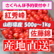 さくらんぼ予約受付中:2020/06/08 10:01