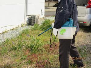 「駐車場除草処理作業」の画像