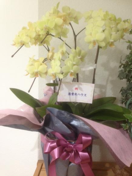 2014/12/24 12:02/今回手掛けて頂いた青木ハウス様からお花を頂きました!
