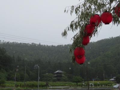 「あいにくの雨・・・」の画像