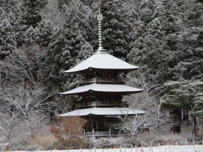 「雪化粧♪」の画像