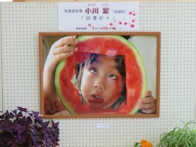 「小川 宏 写真展、開催中です!」の画像