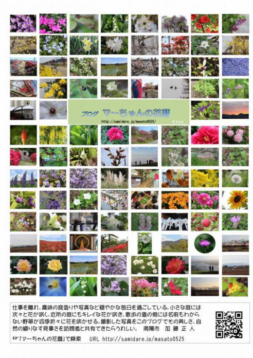 アクセス数5万件突破を記念して「マーちゃんの花暦」のポストカードを作ってみました 多くの来訪者をお待ちしております/