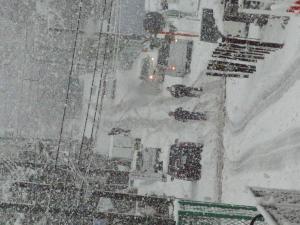 「関東 大雪にビックリ!」の画像