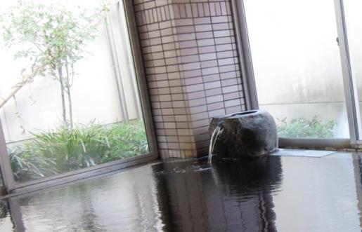 2011/05/02 00:56/東根温泉の泉質