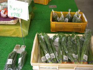 「店内にはさまざまな季節の野菜がいっぱいです。」の画像