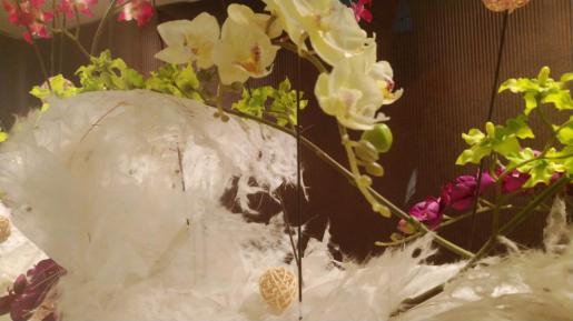 2018/09/03 06:49/☆☆眠れる森17周年特別な時間(*^o^*)☆1Thanks