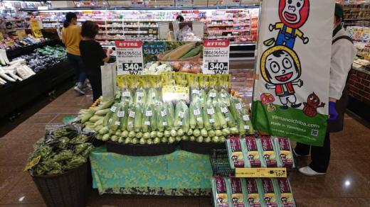 ヨーク天童老野森店に『銀のとうもろこし』特設コーナー!/