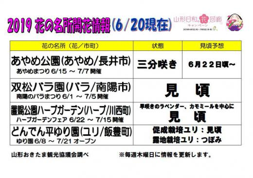 2019置賜地域の花の名所の開花情報(6月20日現在)/