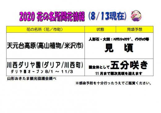 2020置賜地域の花の名所の開花情報(8月13日現在)/