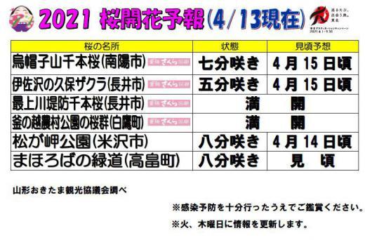 2021置賜地域の桜の名所の開花情報(4月13日現在)/