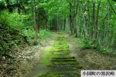「「越後米沢街道・十三峠」ガイドブックについて」の画像