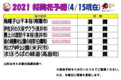 「2021置賜地域の桜の名所の開花情報(4月15日現在)」の画像