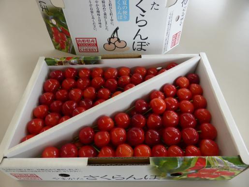 2017/06/27 18:49/さくらんぼ〜!