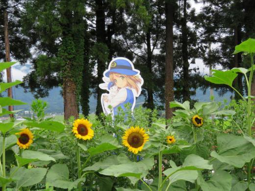 フラワーで花巡り/