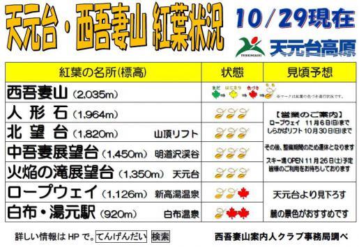 2016/10/29 09:29/西吾妻山天元台紅葉情報10月29日現在